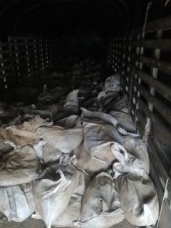 403.700 kilos de material mineralizado ilegal decomisado hasta diciembre.