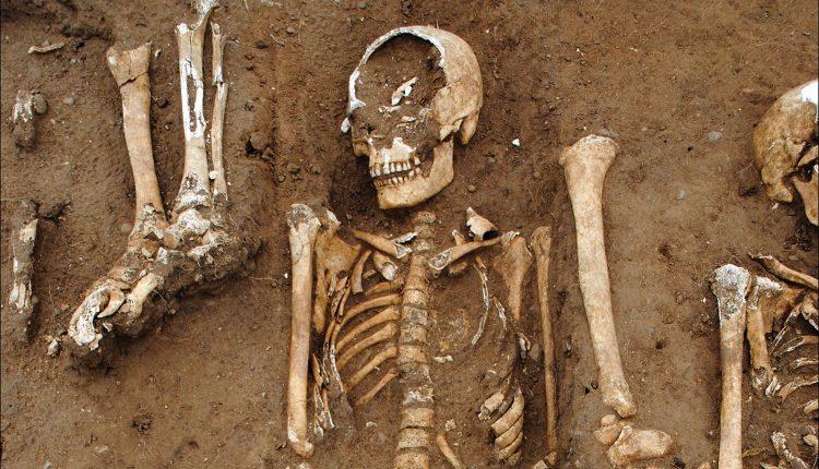 El descubrimiento de Black Death ofrece una nueva y rara mirada a la catástrofe de la pest